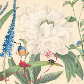 Timeliot est assis dans les fleurs, une pivoine blanche,avec un coléoptère