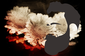 東京 上野浅草系親父 ゲイマッサージ  東京個室出張・大江戸番屋 いやし神成 髭親父 風呂好き親父 オイルマッサージ店 リラクゼーションヒーリング 東京