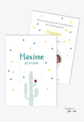 faire part naissance garçon cactus vert avec fleurs et photo