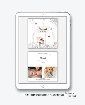 faire-part naissance numérique-faire part électronique-faire part numérique-pdf numérique-faire part connect-faire part à imprimer-faire-part à envoyer par sms-mms-par mail-réseaux sociaux-whatsapp-facebook- biche-foret-le bois-papillon-bouleau-animaux