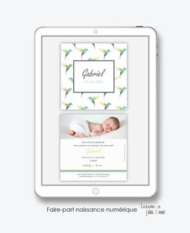 faire part naissance garçon numérique-faire part garçon digital-fichier Pdf-colibris vert-couronne-à imprimer-envoyer par mail -envoyer par sms ou mms-réseaux sociaux
