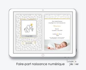 faire-part naissance garçon numérique-faire part naissance électronique-faire part numérique-pdf imprimable-pdf numérique-faire part connecté-éléphant couronne -à imprimer soi-même-faire-part naissance à envoyer par mail