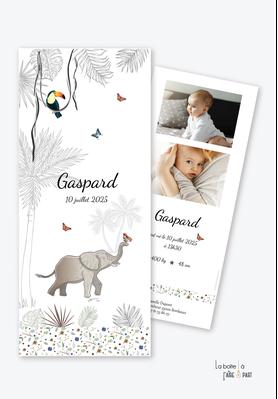 faire part naissance garçon-jungle-savane-toucan-palmier-papillon-elephant-liane-savane-photo-format marque page-