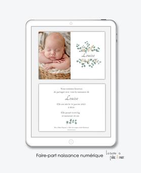 faire-part naissance fille numérique-faire part digital -faire part numérique-imprimable-pdf numérique-faire part connecté-faire part à imprimer-faire-part à envoyer par sms-mms-par mail-réseaux sociaux-whatsapp-facebook-eucalyptus-pampas-photo-champêtre