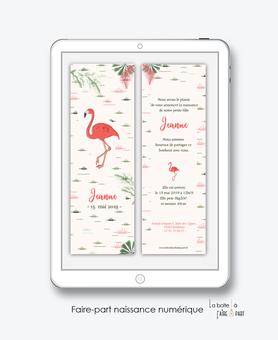 faire-part naissance fille numérique-faire-part naissance fille électronique-fichier pdf -flamant rose tropical -à imprimer soi même-à envoyer par mail -à envoyer par mms-sms-réseaux sociaux