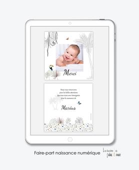 carte de remerciement naissance garçon numérique-remerciements naissance électronique-remerciements numérique-pdf numérique-remerciement connecté-carte de remerciement  à imprimer-photo-toucan-palmier-jungle-tropique-savane-