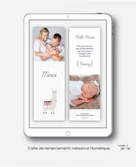 Carte de remerciements naissance fille numérique-remerciements digital-faire part numérique-pdf numérique-faire part connecté-faire part à imprimer-faire-part à envoyer par sms-mms-par mail-réseaux sociaux-whatsapp-facebook-lama coloré-photo-motif triangl