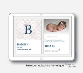 faire-part naissance fille numérique-faire-part naissance fille électronique-fichier pdf -monogramme petit oiseaux -oiseaux-fleurs-motif rétro-à imprimer soi même-à envoyer par mail -à envoyer par mms-sms-réseaux sociaux