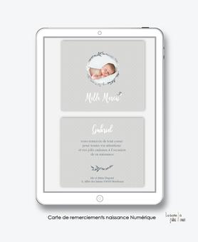 Carte de remerciements naissance garçon numérique-carte de remerciements garçon électronique-fichier Pdf-lama couronne-oiseaux-à imprimer soi même-A envoyer via les réseaux sociaux whatsapp-messenger-facebook-mms et mail