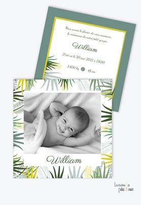 faire part naissance garçon-format carré-feuilles tropicales-couleur vert intense-les tropique-palmier-grande photo