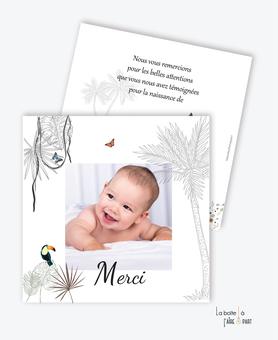 carte de remerciement naissance garçon-photo-toucan-palmier-jungle-tropique-savane-