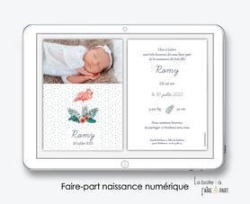 faire-part naissance numérique-faire part électronique-faire part numérique-imprimable-pdf numérique-faire part connecté-faire-part à envoyer par sms-mms-par mail-réseaux sociaux-whatsapp-facebook-flamant rose-hibiscus-palmier-tropical-exotique
