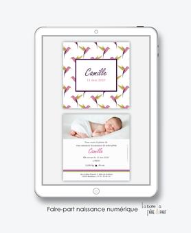 faire-part naissance fille numérique-faire-part naissance fille électronique-fichier pdf -colibris rose-oiseaux-à imprimer soi même-à envoyer par mail -à envoyer par mms-sms-réseaux sociaux