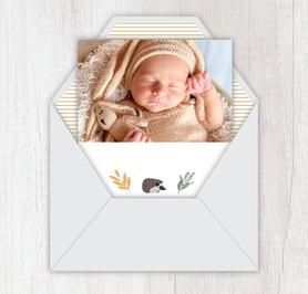 Faire-part naissance garçon gif animé-faire-part naissance virtuel-faire part naissance digital-faire-part naissance numérique animé-électronique-à envoyer via les réseaux sociaux-whatsapp-facebook-messenger-mms-faire-part vidéo-herisson-feuilles