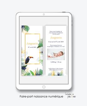 faire part naissance garçon numérique-faire part garçon digital-fichier Pdf-tropical toucan-à imprimer-envoyer par mail -envoyer par sms ou mms-réseaux sociaux