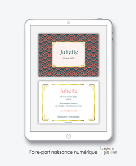 faire-part naissance fille numérique-faire-part naissance fille électronique-fichier pdf -motif vintage -à imprimer soi même-à envoyer par mail -à envoyer par sms