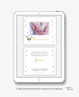 Carte de remerciements naissance fille numérique-carte de remerciements fille électronique-fichier Pdf-panda plume -à imprimer soi même-à envoyer par mail -à envoyer par sms