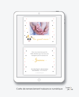 Carte de remerciements naissance fille numérique-carte de remerciements fille électronique digital-fichier Pdf-panda plume -à imprimer soi même-carte de remerciement à envoyer par mail, mms et réseau sociaux