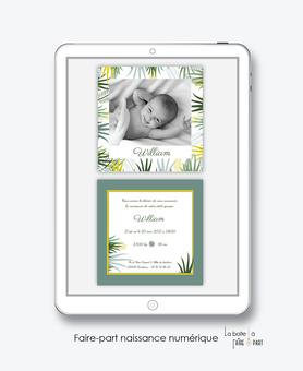 faire-part naissance garçon numérique-faire part digital-faire part numérique-imprimable-pdf numérique-faire part connecté-feuillage tropical-palmier-faire part à imprimer-faire-part à envoyer par sms-mms-par mail-réseaux sociaux-whatsapp-facebook