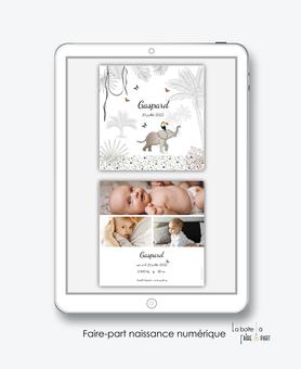 faire-part naissance numérique-faire part électronique-faire part numérique-pdf numérique-faire part connect-faire part à imprimer-faire-part à envoyer par sms-mms-par mail-réseaux sociaux-whatsapp-facebook- jungle-elephant-tropical-savane-palmier-liane-