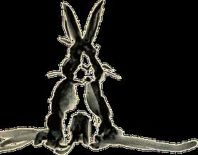 Kaninchen - mein Markenzeichen