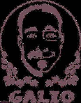 Tous droits réservés sur le logo GALIO