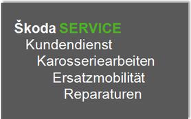 >> Unser ŠKODA Service <<