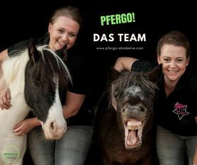 Pferdeergotherapie: Die Schulung der Basissinne des Pferdes nach ergotherapeutischen Ansätzen. Werde Pferdeergotherapeut und absolviere eine Ausbildung nach PFERGO: 1. Akademie für pferdeergotherapie.