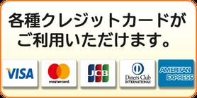 施術のお支払いに各種クレジットカードが利用できます