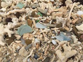 沖縄 シーグラス 貝殻 ビーチコーミング