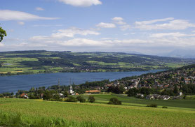 Beinwil am See