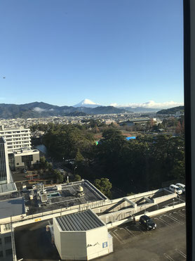 駿府城公園(手前の緑の中)、富士山を望む