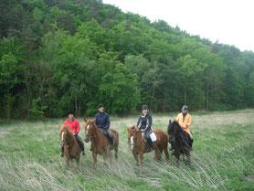 reiten ohne Grenzen im Wendland