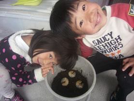 カブトの幼虫と子供