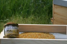 pollen frais, pollen sec morbihan, miel, apiculture, ruche, abeille