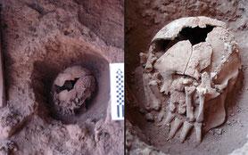 Vermutlich rituelle Enthauptung aus der Steinzeit**