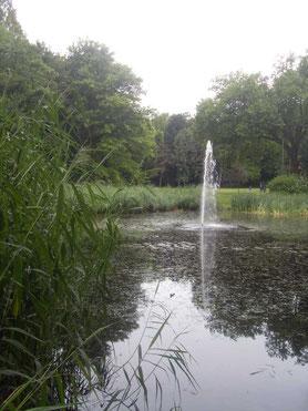 """Springbrunnen im """"von Wedelstaed Park"""""""