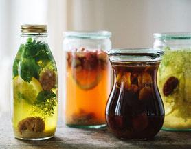 boissons pétillantes vivantes : kombucha kefir tibisco