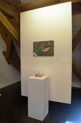 Das Bild zeigt eine Installation aus Fotografie und Objekt zum Thema Klimawandel, Traum und Realität