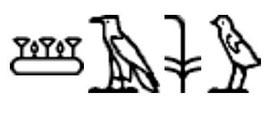 Pays des Shasous de Yahweh - sur le temple d'Aménophis III à Soleb. Hiéroglyphes.
