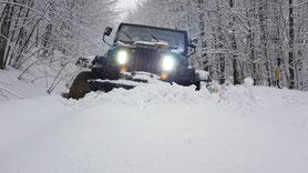 Snow Odyssey
