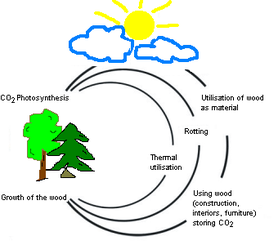 Wood uses solar energy to grow and stores CO2