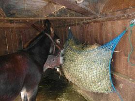 Reti per fieno anti spreco slow feeder selleria la for Box per cavalli fai da te