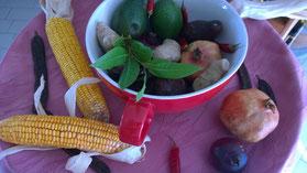 Johannesbrotbaum,Alfarroba,Carob,Gemüse,Legumes,Vegetables,Martins-Kulinarium,Carvoeiro,Algarve,Portugal