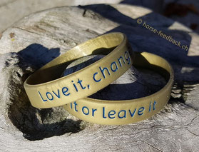 """Die """"love it- change it - leave it""""-Strategie hilft, richtig zu entscheiden - horse-feedback.ch"""