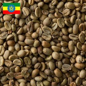 最高のグレードの、エチオピアで栽培されたモカ豆
