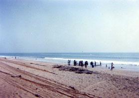 プーリーのビーチ