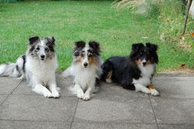 Belle mit ihren Töchtern