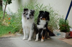 die zwei Schwestern Ixy und Ilvy alias Hope