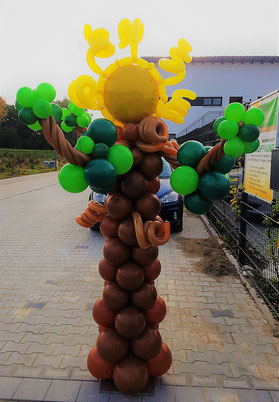 Sonnenscheinbaum
